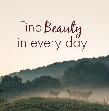find-beauty-1